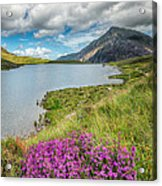 Beautiful Wales Acrylic Print by Adrian Evans