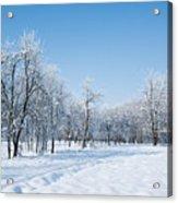 Beautiful Winter Landscape Acrylic Print