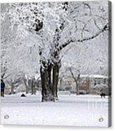 Beautiful Winter Park Acrylic Print