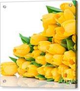 Beautiful Yellow Tulips Valentine Acrylic Print by Boon Mee