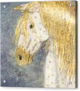 Beauty And Strength  Golden Appaloosa Acrylic Print