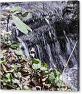 Beauty And The Rapids Acrylic Print