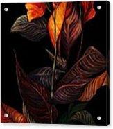 Beauty In The Dark Acrylic Print