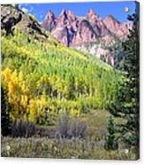 Beauty In The Mountains Acrylic Print