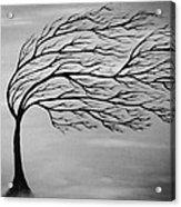 Beauty Of Nature Acrylic Print