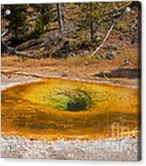 Beauty Pool In Upper Geyser Basin In Yellowstone National Park Acrylic Print