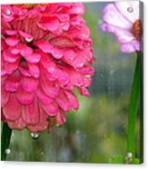Beauty Showing Through The Rain Acrylic Print