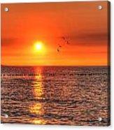 Beauty Sunset Acrylic Print