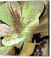 Beauty Viii Acrylic Print