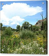 Beaver Creek Valley In Colorado Acrylic Print