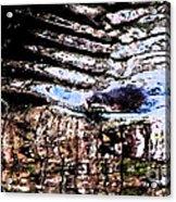 Beaver Fever Acrylic Print