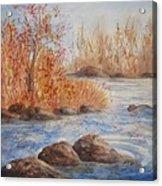 Beaver Pond Acrylic Print