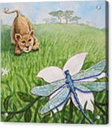 Beckoning The Little Predator To Come Closer Acrylic Print