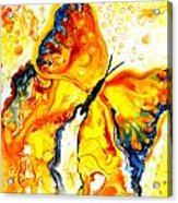 Becoming Butterfly Acrylic Print