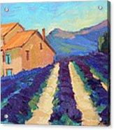 Bedoin - Provence Lavender Acrylic Print