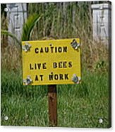 Bee Careful Acrylic Print