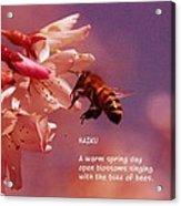 Bee Haiku Acrylic Print