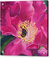 Bee Happy Acrylic Print