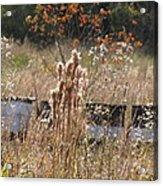 Bee Hives II Acrylic Print
