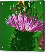 Bee In A Green Ambiance Acrylic Print