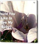 Bee My Baby Acrylic Print