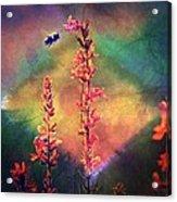 Bee N Wildflowers Diamond Earth Tones Acrylic Print