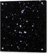 Beehive Star Cluster Acrylic Print