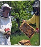 Beekeepers Inspecting A Beehive Acrylic Print