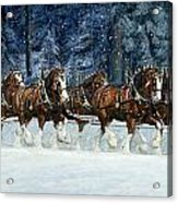 Clydesdales 8 Hitch On A Snowy Day Acrylic Print