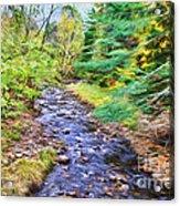 Beginning Autumn Changes Acrylic Print