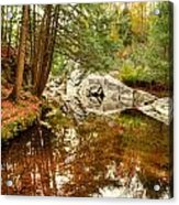 Behind The Falls Acrylic Print by Dennis Clark