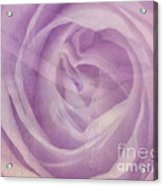 Behind The Purple Veil  Acrylic Print