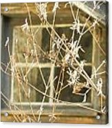 Beige Window At The End Of Winter Acrylic Print