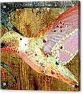 Bejeweled Hummingbird Acrylic Print