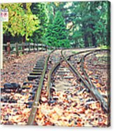 Belgrave Puffing Billy Railway Track Acrylic Print