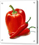 Bell Pepper With Chili Peppers Acrylic Print