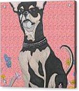 Bella Bella Pink Acrylic Print