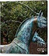 Belmond Charleston Place Horse Fountain Acrylic Print