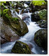 Below Rainier Acrylic Print by Chad Dutson