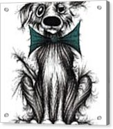 Ben The Dog Acrylic Print