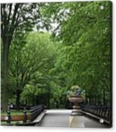 Bench Rows In Central Park  Nyc Acrylic Print