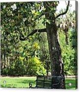 Bench Under The Magnolia Tree Acrylic Print