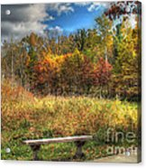 Benched In Autumn Acrylic Print