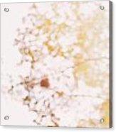 Beneath A Tree  14 5284  Diptych  Set 1 Of 2 Acrylic Print