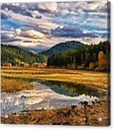 Benewah Lake Wild Rice Fields Acrylic Print