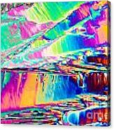Benzoic Acid Crystals In Polarized Light Acrylic Print