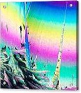 Benzoic Acid Microcrystals Coloful Abstract Art Acrylic Print
