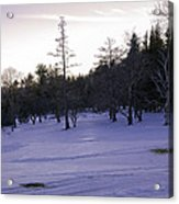 Berkshires Winter 5 - Massachusetts Acrylic Print by Madeline Ellis