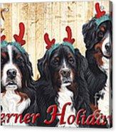 Berner Holiday Acrylic Print