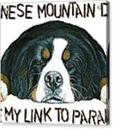 Bernese Mountain Dog Paradise Acrylic Print